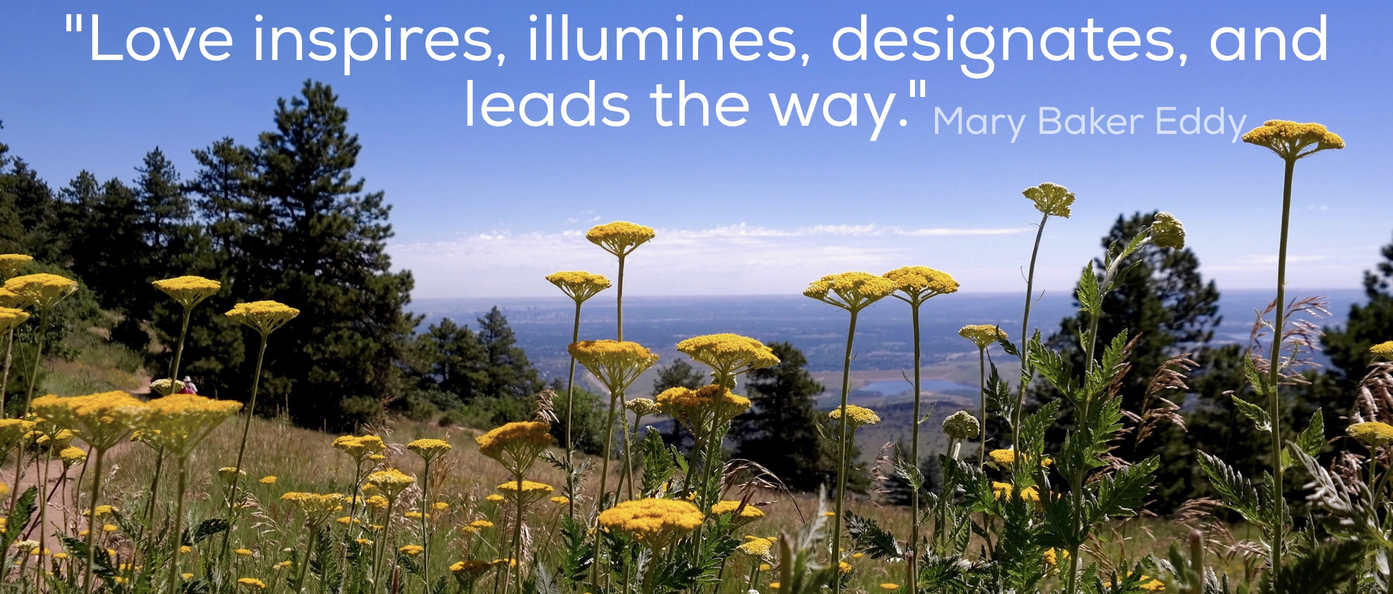 Love inspires, illumines, designates and leads the way.